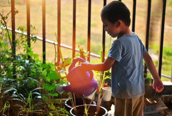 3 raisons qui vous donneront envie de jardiner