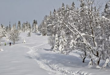 Mes vacances de février en Auvergne